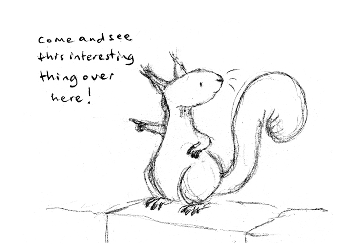 blog_squirrel_test_1